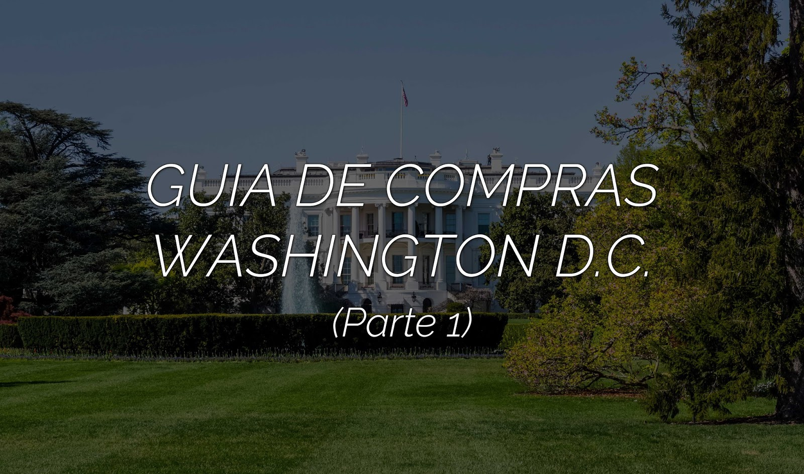 Guia de compras: Washington D.C. (Parte 1)