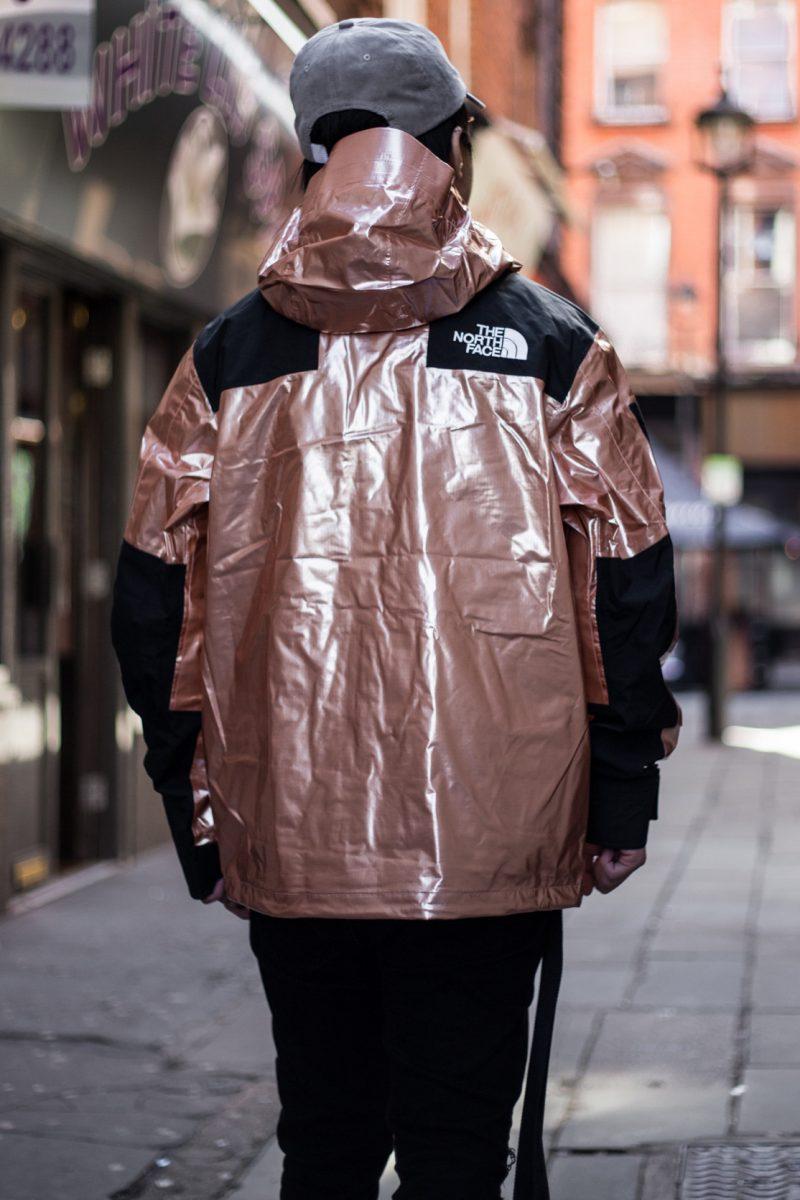 supreme the north face foil edie lee 03 - Sortudo compra pela metade do preço jaqueta da collab Supreme x The North Face