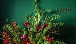 LAMB Arts abre exposição 'Soft Furnishing' dia 2 de fevereiro