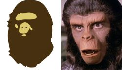 Primata processa BAPE por uso de imagem sem autorização